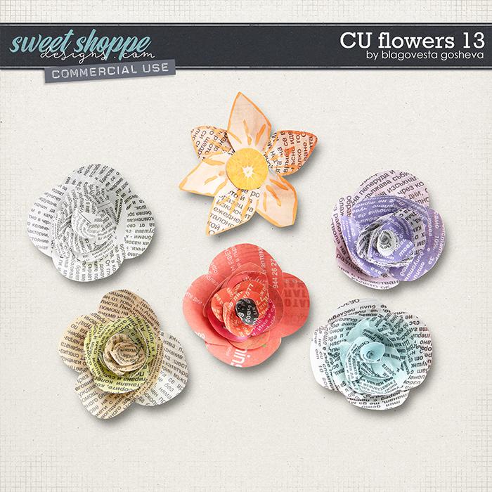 CU Flowers 13 by Blagovesta Gosheva