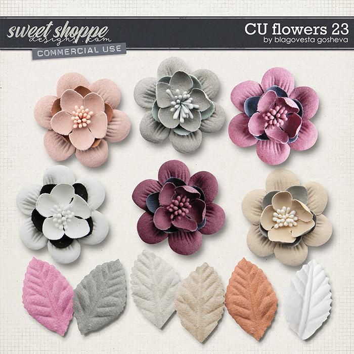 CU Flowers 23 by Blagovesta Gosheva