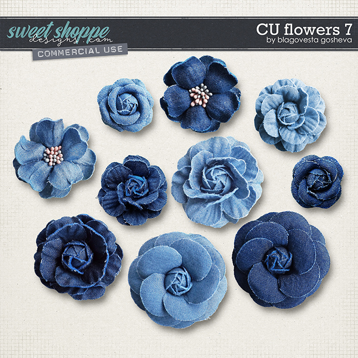 CU Flowers 7 by Blagovesta Gosheva