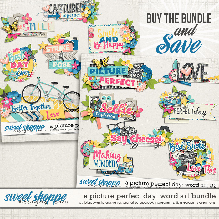 A Picture Perfect Day: Word Art Bundle by Blagovesta Gosheva, Digital Scrapbook Ingredients and Meagan's Creations