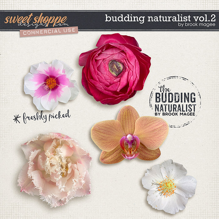 Budding Naturalist Vol.2 - CU - by Brook Magee