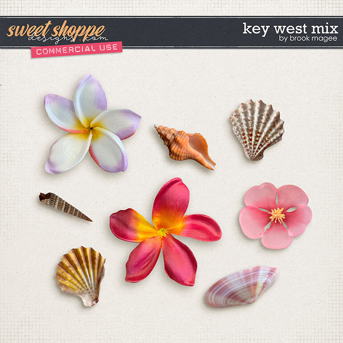 Key West Mix - CU - by Brook Magee
