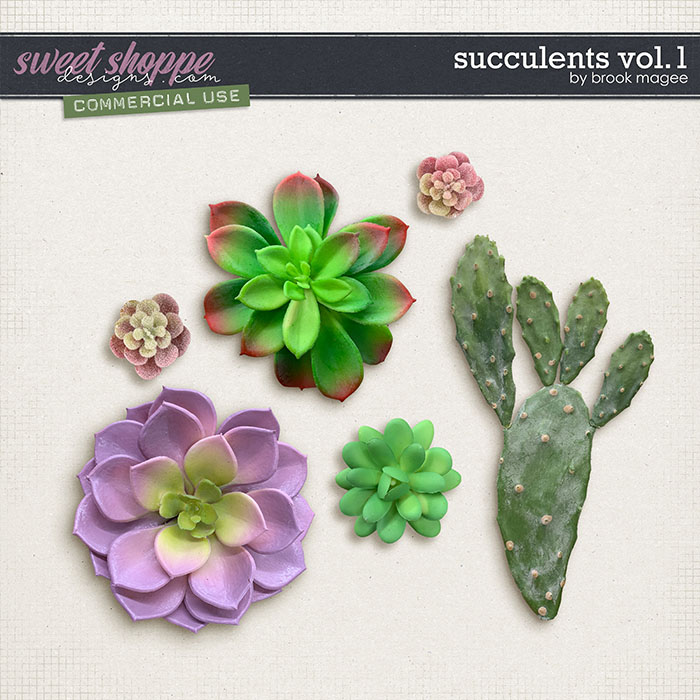 Succulents Vol.1 - CU - by Brook Magee