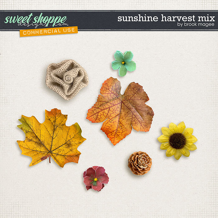 Sunshine Harvest Mix - CU - by Brook Magee