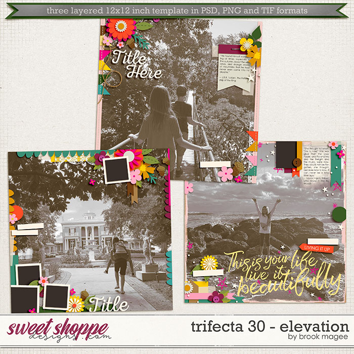Brook's Templates - Trifecta 30 - Elevation by Brook Magee