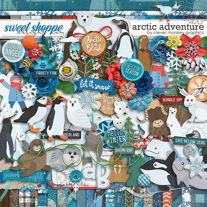 Arctic Adventure by Clever Monkey Graphics