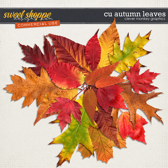 CU Autumn Leaves 1 by Clever Monkey Graphics