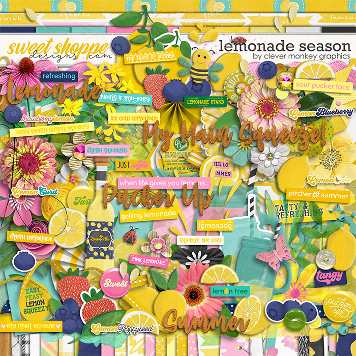 Lemonade Season by Clever Monkey Graphics