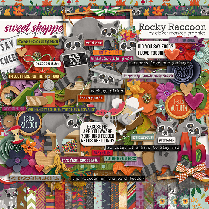 Rocky Raccoon by Clever Monkey Graphics