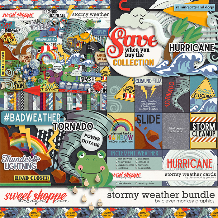 Stormy Weather Bundle by Clever Monkey Graphics