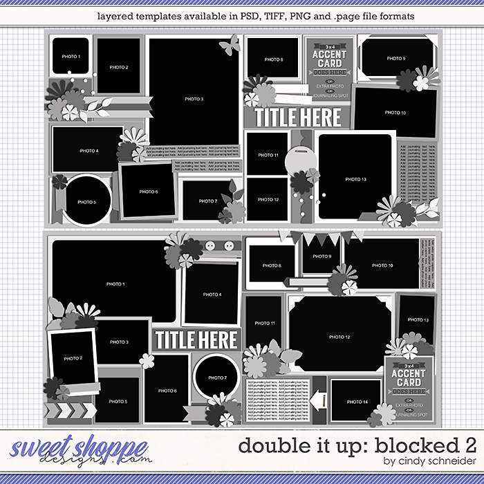 Cindy's Layered Templates - Double It Up: Blocked 2 by Cindy Schneider