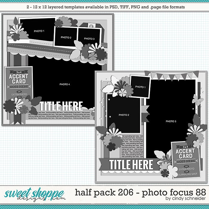 Cindy's Layered Templates - Half Pack 206: Photo Focus 88 by Cindy Schneider