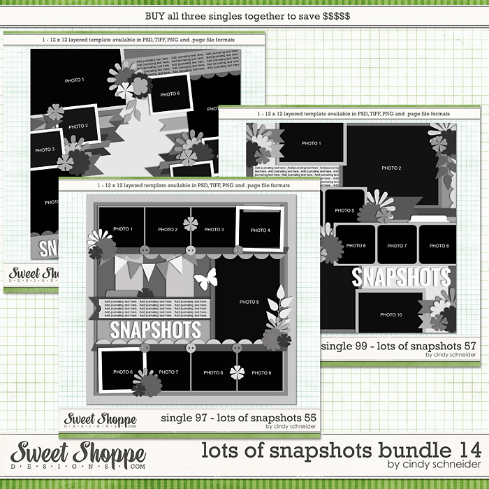 Cindy's Layered Templates - Lots of Snapshots Bundle 14 by Cindy Schneider