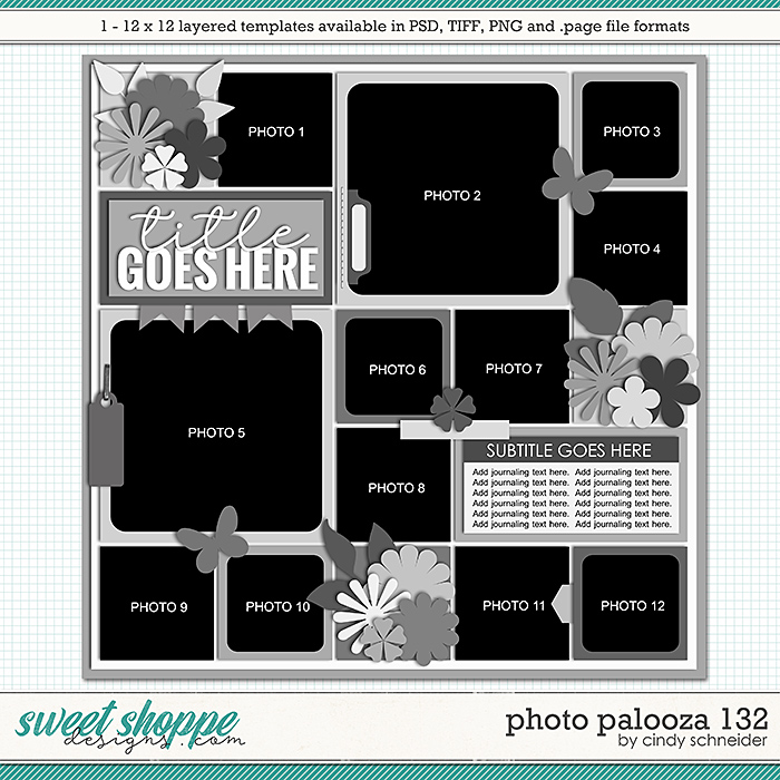Cindy's Layered Templates - Photo Palooza 132 by Cindy Schneider