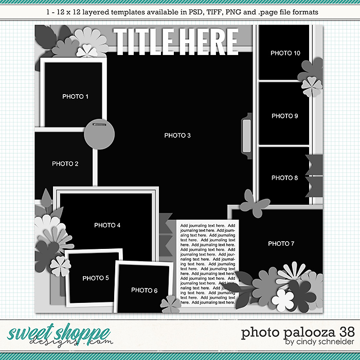Cindy's Layered Templates - Photo Palooza 38 by Cindy Schneider