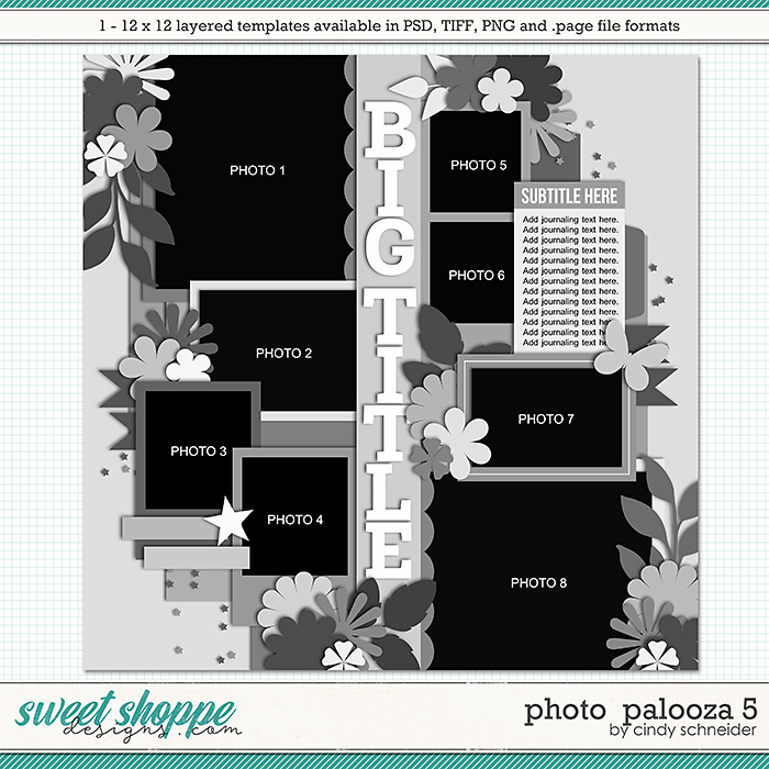 Cindy's Layered Templates - Photo Palooza 5 by Cindy Schneider