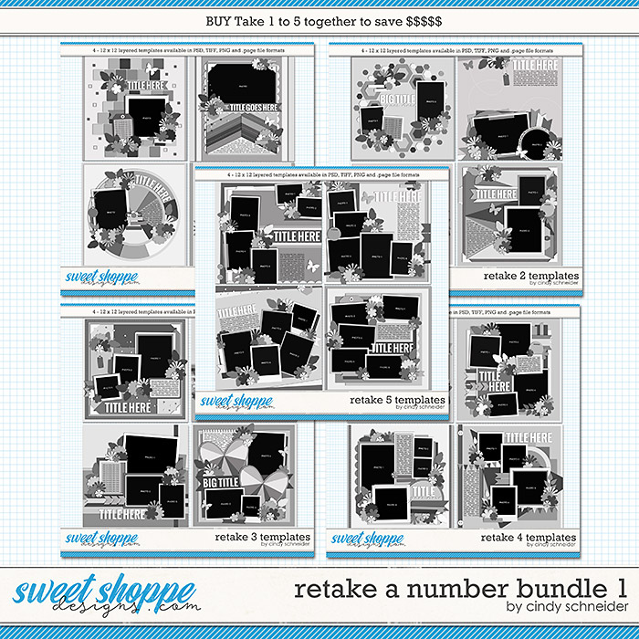 Retake All The Numbers Bundle 1 by Cindy Schneider