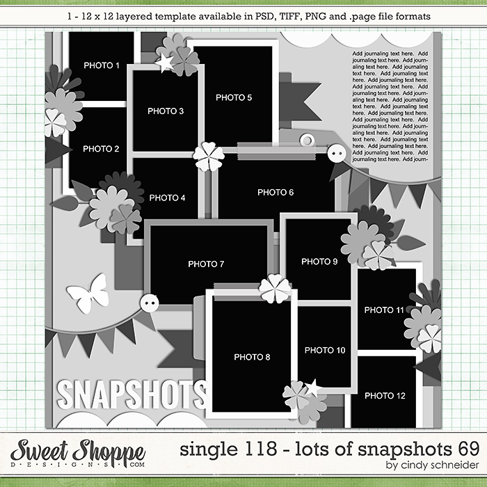 Cindy's Layered Templates - Single 118: Lots of Snapshots 69 by Cindy Schneider