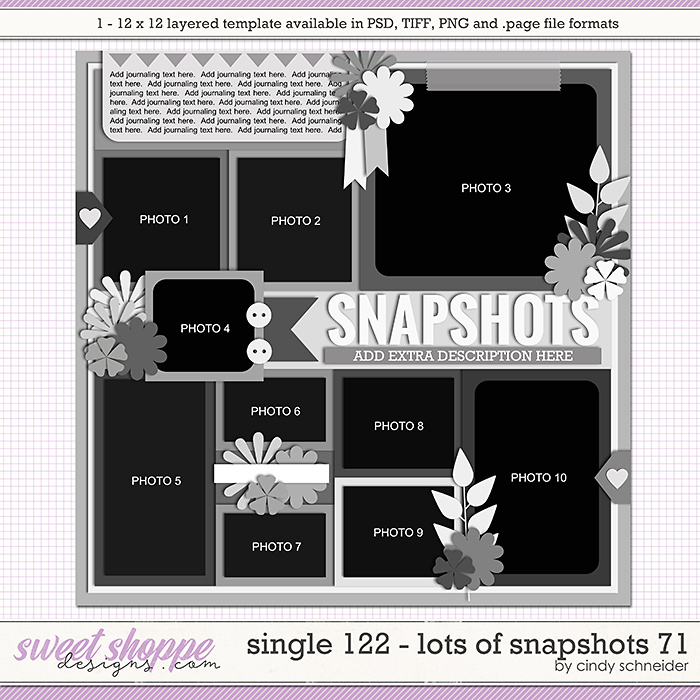 Cindy's Layered Templates - Single 122: Lots of Snapshots 71 by Cindy Schneider