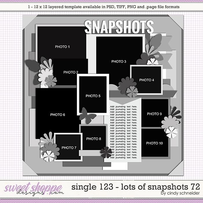 Cindy's Layered Templates - Single 123: Lots of Snapshots 72 by Cindy Schneider