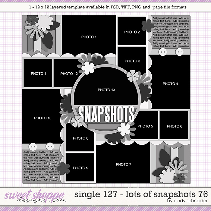 Cindy's Layered Templates - Single 127: Lots of Snapshots 76 by Cindy Schneider