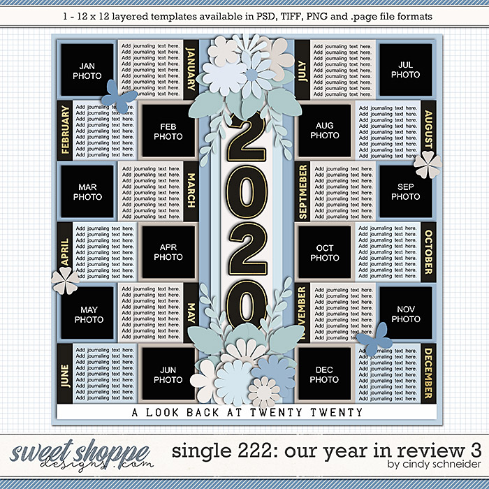 Cindy's Layered Templates - Single 222: Our Year in Review 3 by Cindy Schneider