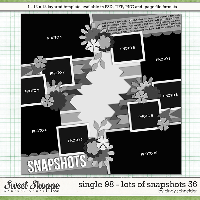 Cindy's Layered Templates - Single 98: Lots of Snapshots 56 by Cindy Schneider