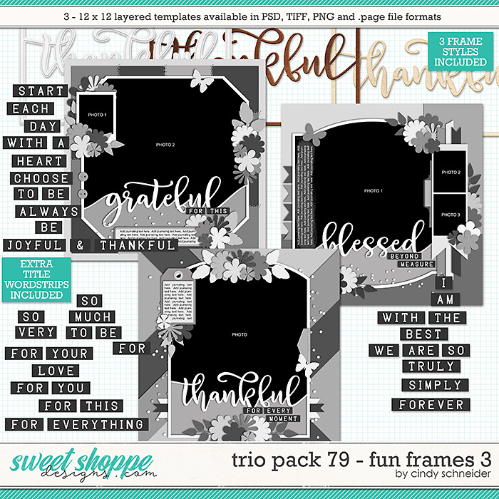 Cindy's Layered Templates - Trio Pack 79: Fun Frames by Cindy Schneider