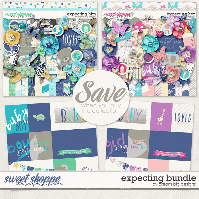 Expecting Bundle by Dream Big Designs