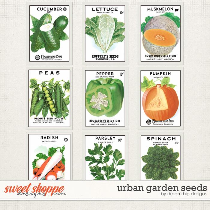 Urban Garden Seeds by Dream Big Designs