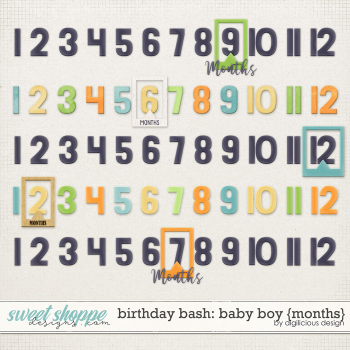 Birthday Bash: Baby Boy {Months} by Digilicious Design