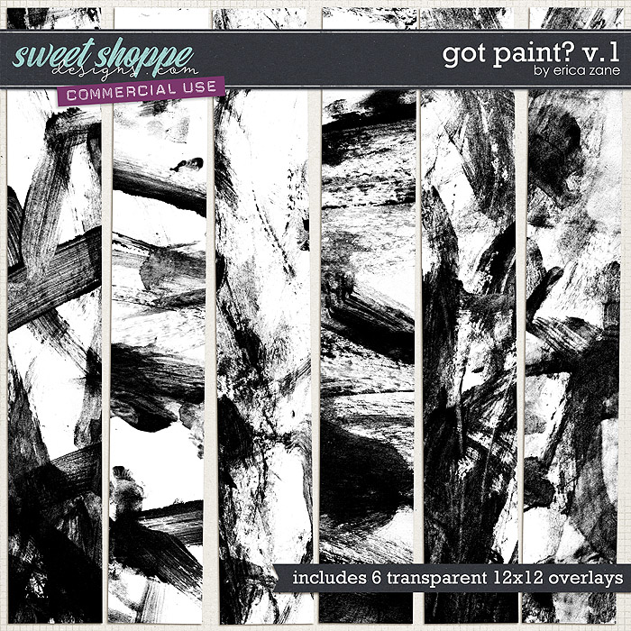 Got Paint? v.1 by Erica Zane