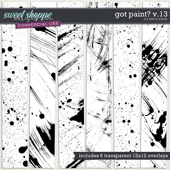 Got Paint? v.13 by Erica Zane