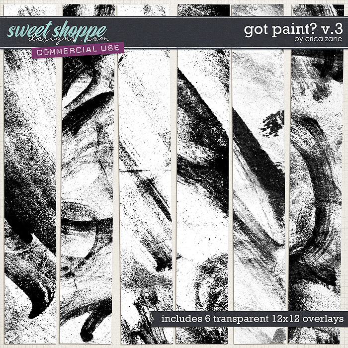 Got Paint? v.3 by Erica Zane