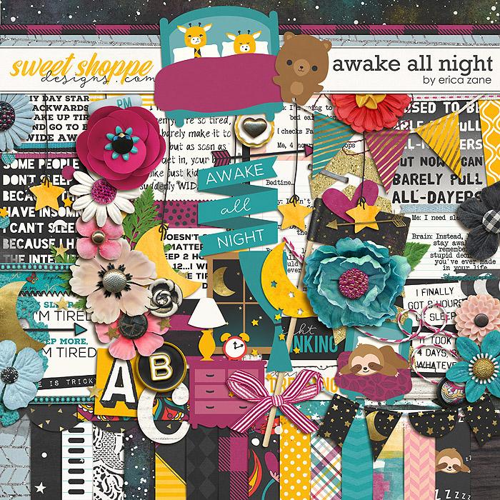 Awake All Night by Erica Zane