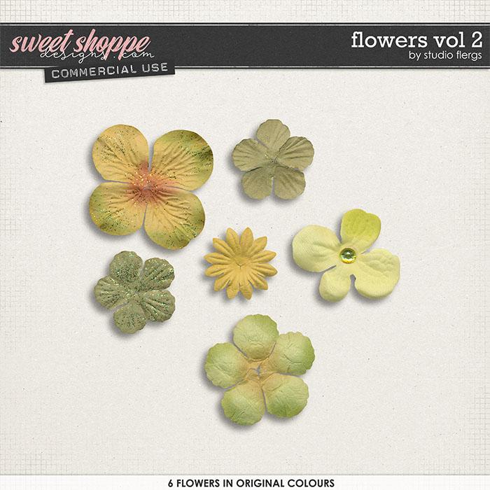 Flowers VOL 2 by Studio Flergs