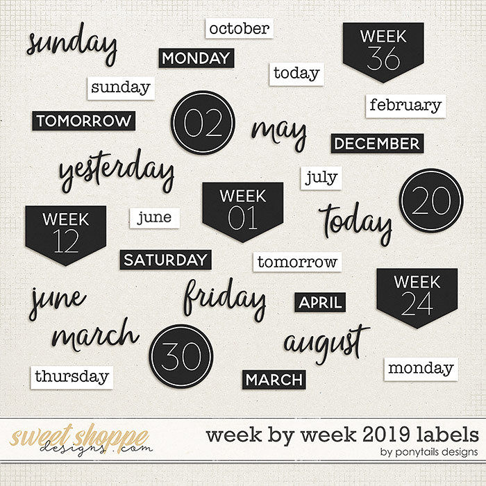 Week by Week 2019 Labels by Ponytails