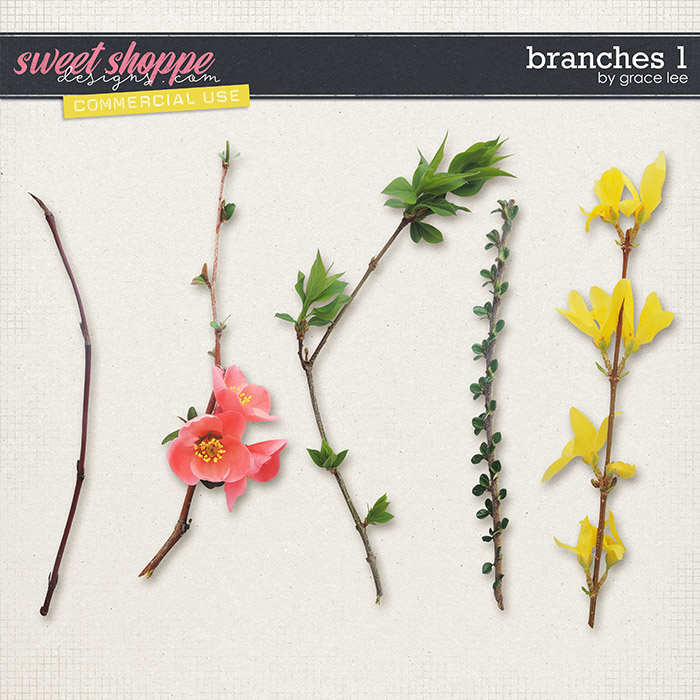 Branches 1 by Grace Lee