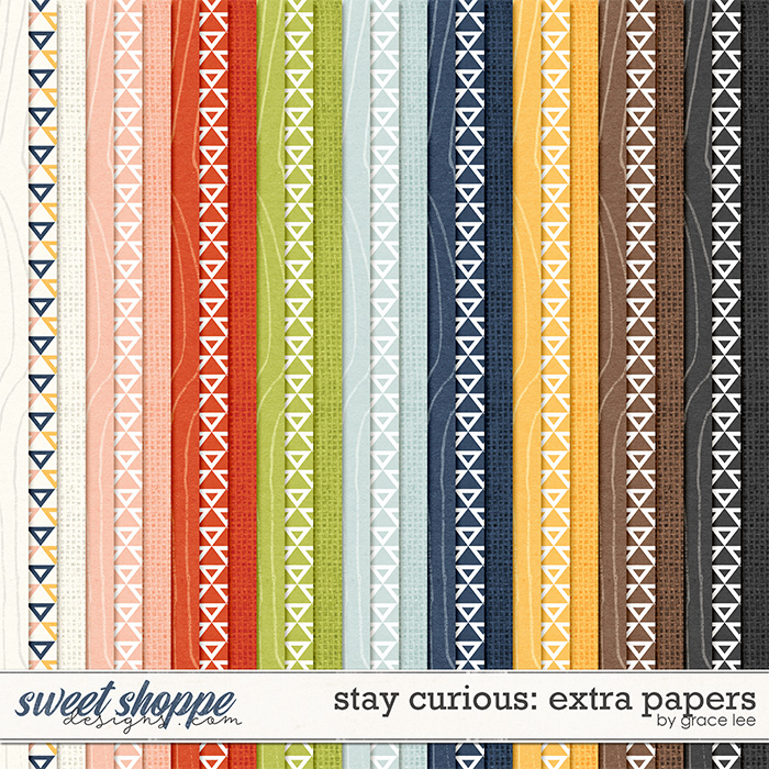 Stay Curious: Extra Papers by Grace Lee