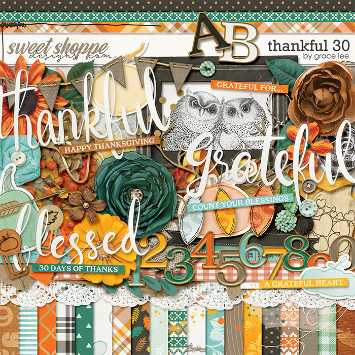 Thankful 30 by Grace Lee