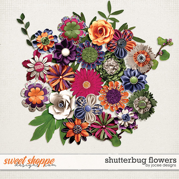 Shutterbug Flowers by JoCee Designs