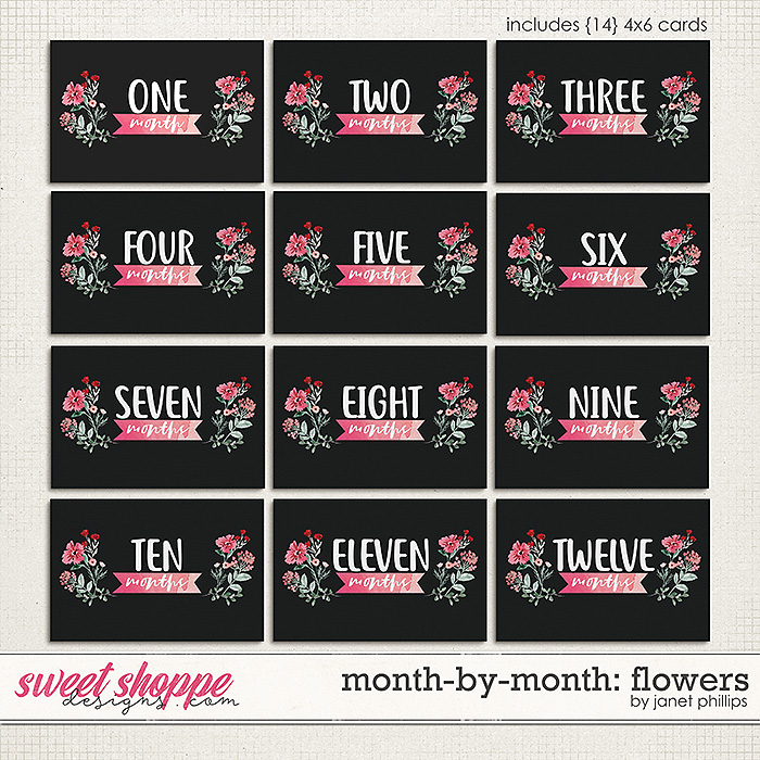 MONTH-BY-MONTH: FLOWERS by Janet Phillips