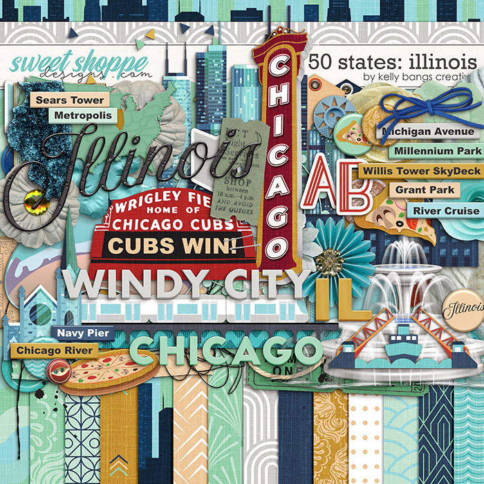 50 States: Illinois by Kelly Bangs Creative