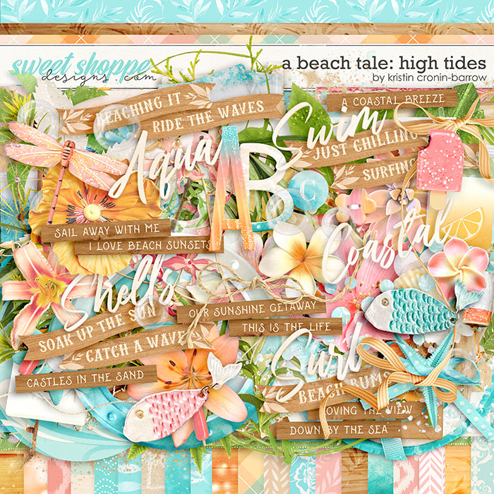 A Beach Tale: High Tides by Kristin Cronin-Barrow