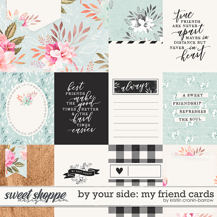 By Your Side: My Friend Cards by Kristin Cronin-Barrow