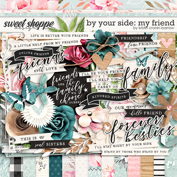 By Your Side: My Friend by Kristin Cronin-Barrow