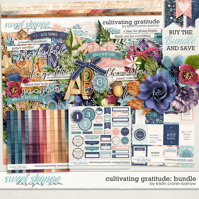 Cultivating Gratitude Bundle by Kristin Cronin-Barrow