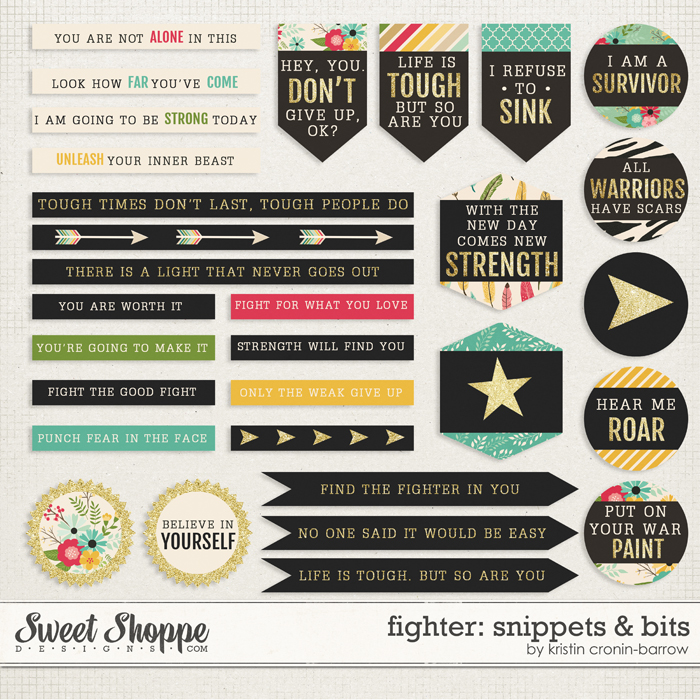 Fighter: Snippets & Bits by Kristin Cronin-Barrow