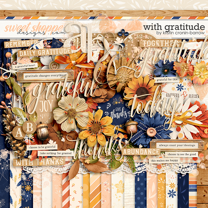 With Gratitude by Kristin Cronin-Barrow