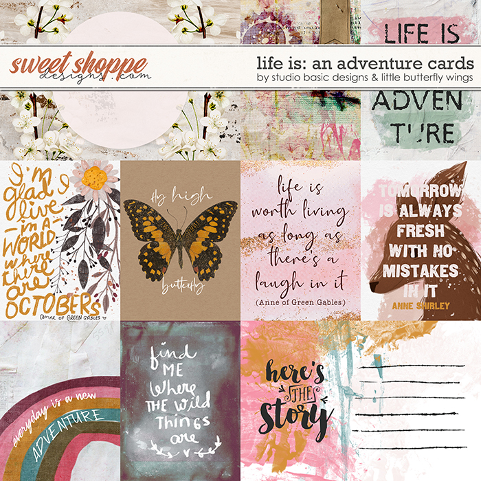 Life Is: An Adventure Cards by Studio Basic and Little Butterfly Wings